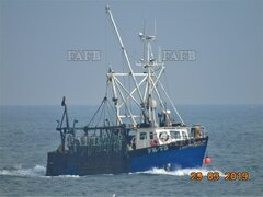 Single Trawler - 5 Aside Scalloper - Radiant Star FR 73 - ID:116258