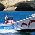 Pescador 780 forward wheelhouse FIBRAMAR - picture 17