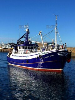 Millers Steel Twin Rig Trawler - Harvest Moon - ID:116322