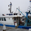 Sterntrawler - picture 5