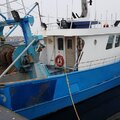 Sterntrawler - picture 3