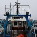 Sterntrawler - picture 4