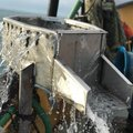 Boat refit service, Net Drums, Fish washer, kort Nozzle - picture 8