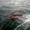 Boat refit service, Net Drums, Fish washer, kort Nozzle - picture 2
