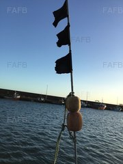 Lobster Pot Poles - ID:83672