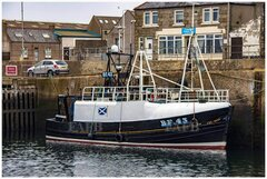 Macduff Build twin/single trawler - Lee-Rose II - ID:116718