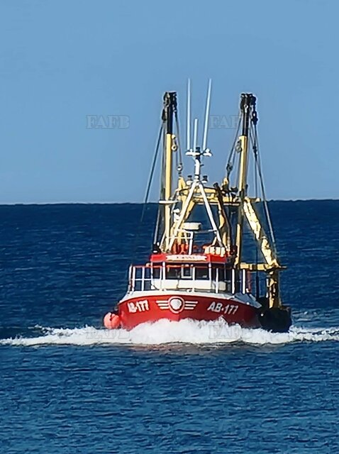 Steel scalloper/trawler - picture 1